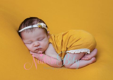 Fine Stretch Backdrops/Beanbag Overlays ~ Mustard